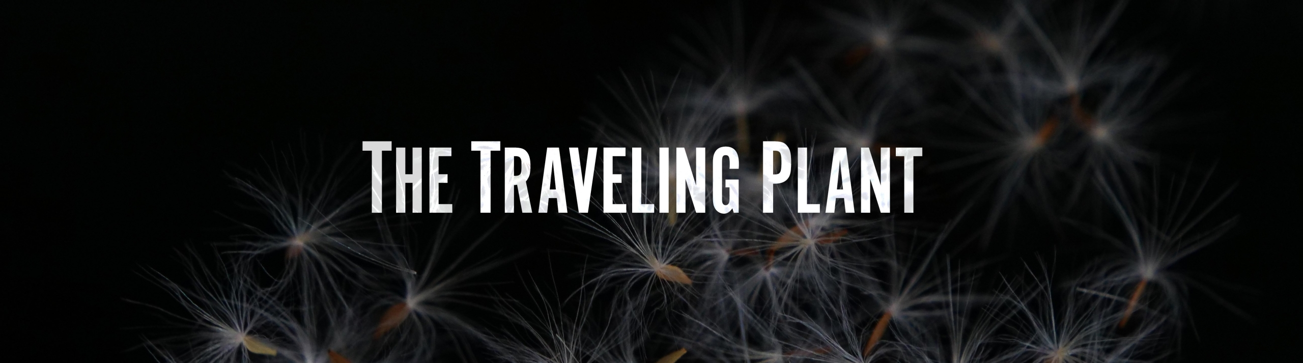 Traveling Plant